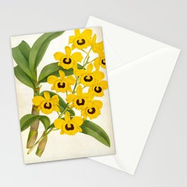 Vintage Yellow Leafy Orchids Lindenia Collection Stationery Cards