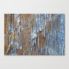 Old painted wooden plank Canvas Print