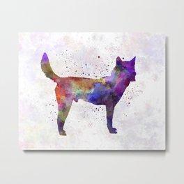 Korea Jindo Dog in watercolor Metal Print