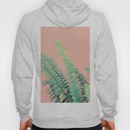 Ferns on Blush Hoody