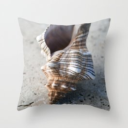 Seashell With Lines Throw Pillow