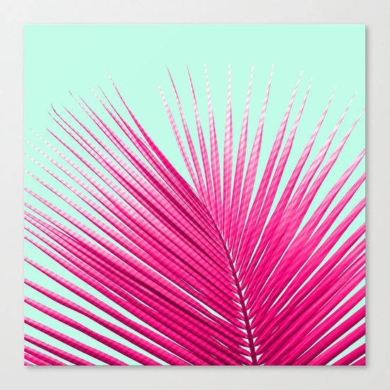 Pink Candy Cane Palm Canvas Print