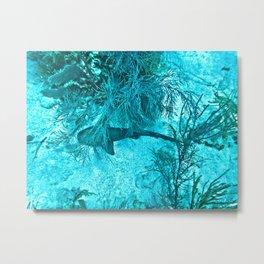 On the Ocean Floor Metal Print