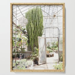 Giant Cactus in the Greenhouse Serving Tray