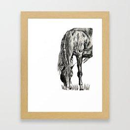 Grazing Framed Art Print