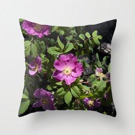 Wild Rose Phoenix Photograph Throw Pillow