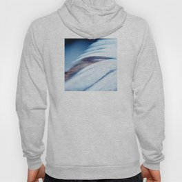 Whispers of a Feather Wing Hoody