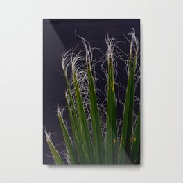 Palm Fronds Against Grey Background Metal Print