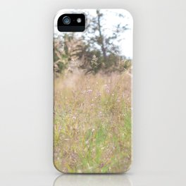 Wild Flower Grow Where You Want To iPhone Case