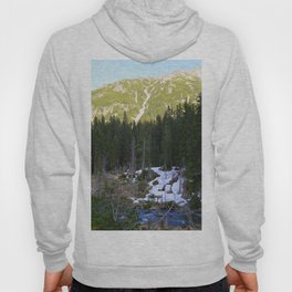 The Snow is Melting Hoody