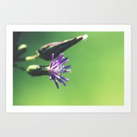 minimalism Art Prints featuring Minimalism by BURNEDINTOMYHE∆RT♥