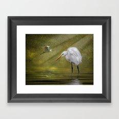 Everglades Evening Framed Art Print