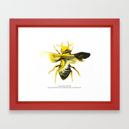 Wallace's Giant Bee Framed Art Print