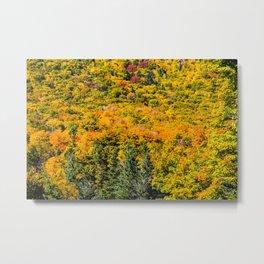 New England Fall. USA. Metal Print