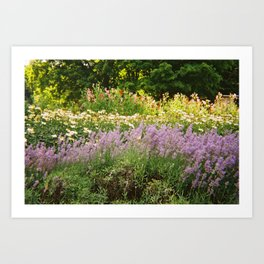 Flower Farm Art Print