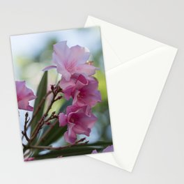 pink oleander in the garden Stationery Cards