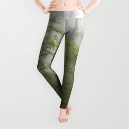 Adventure Ahead - Foggy Forest Digital Nature Photography Leggings