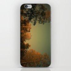 Lichtstimmung auf der Heide iPhone & iPod Skin