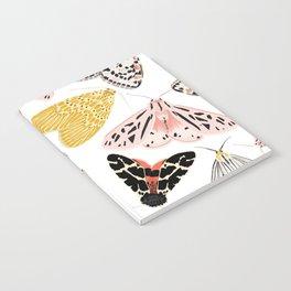 Moth's Diverse Beauty Pattern Notebook