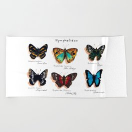 Nymphalidae butterflies Beach Towel