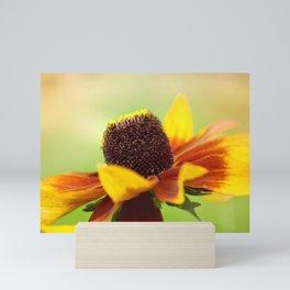 AFE Rudbeckia Mini Art Print