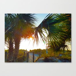 Lead Me to the Sun -Photography Collection Canvas Print