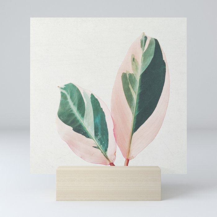 Pink Leaves I Mini Art Print