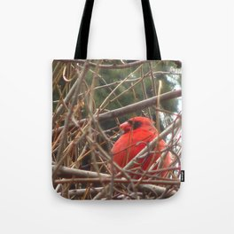 Chilly Cardinal 2 Tote Bag