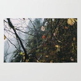 Autumn Fog Drip Dewdrops Rug