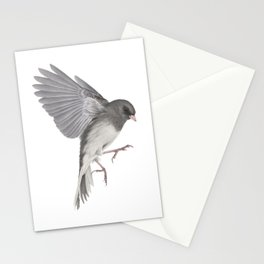 Dark Eyed Junco Stationery Cards