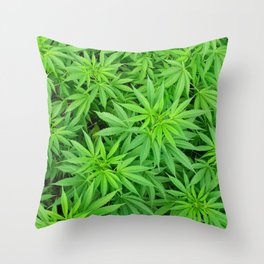 Marijuana Cannabis Weed Pot Plants Throw Pillow