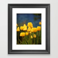 Yellow Tulips Framed Art Print