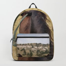 Midnight Run's View Backpack