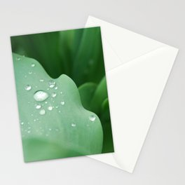 I Dream of Spring Stationery Cards