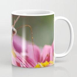 Colorful Moth on a Zinnia Flower Coffee Mug