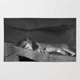The Big Cat Nap Rug