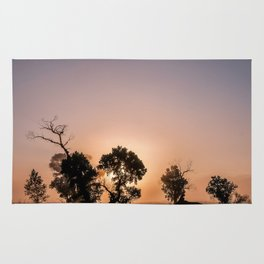 Sunset Landscape in the Valley Rug