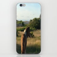 pony iPhone & iPod Skins featuring pony by catrinaevans