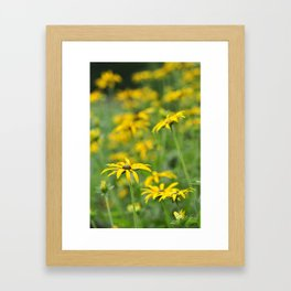 Yellow flowers Framed Art Print