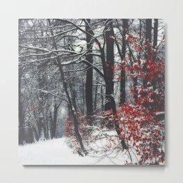 Winter Day Metal Print