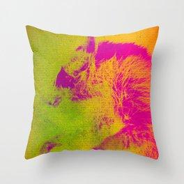 Le Raton Laveur Throw Pillow