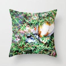 Forgotten Garden 1 Throw Pillow