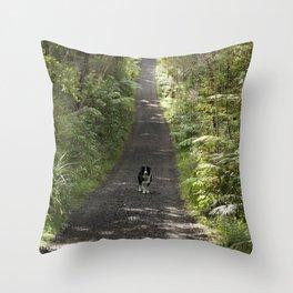 Border Collie on a Walk Throw Pillow