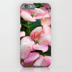 Pretty in Pink iPhone 6s Slim Case