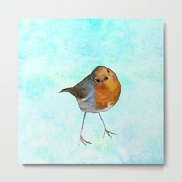 Robin -The visitor Metal Print
