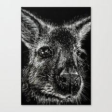 The Wallaby Canvas Print