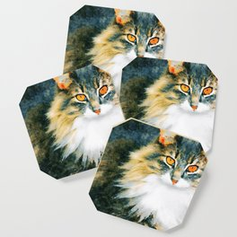 Cat with Orange Eyes Coaster
