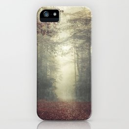 hOme - misty forest path iPhone Case