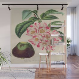Cydonia Japonica Vintage Botanical Floral Flower Plant Scientific Wall Mural