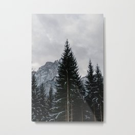 Stormy Forest | Nature and Landscape Photography Metal Print